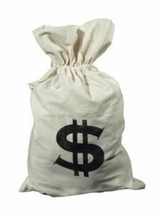 do-it-yourself_-money-bag-costume-_-ehow_com.jpg